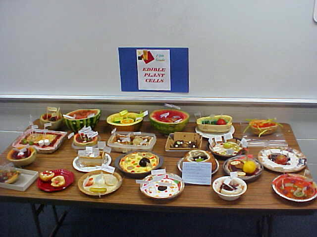 Edible Plant Cell Project Ideas http://je008.k12.sd.us/CALENDAR-NEWS%20AND%20VIEWS/NEWS%20AND%20VIEWS%20WRITE%20UPS.htm