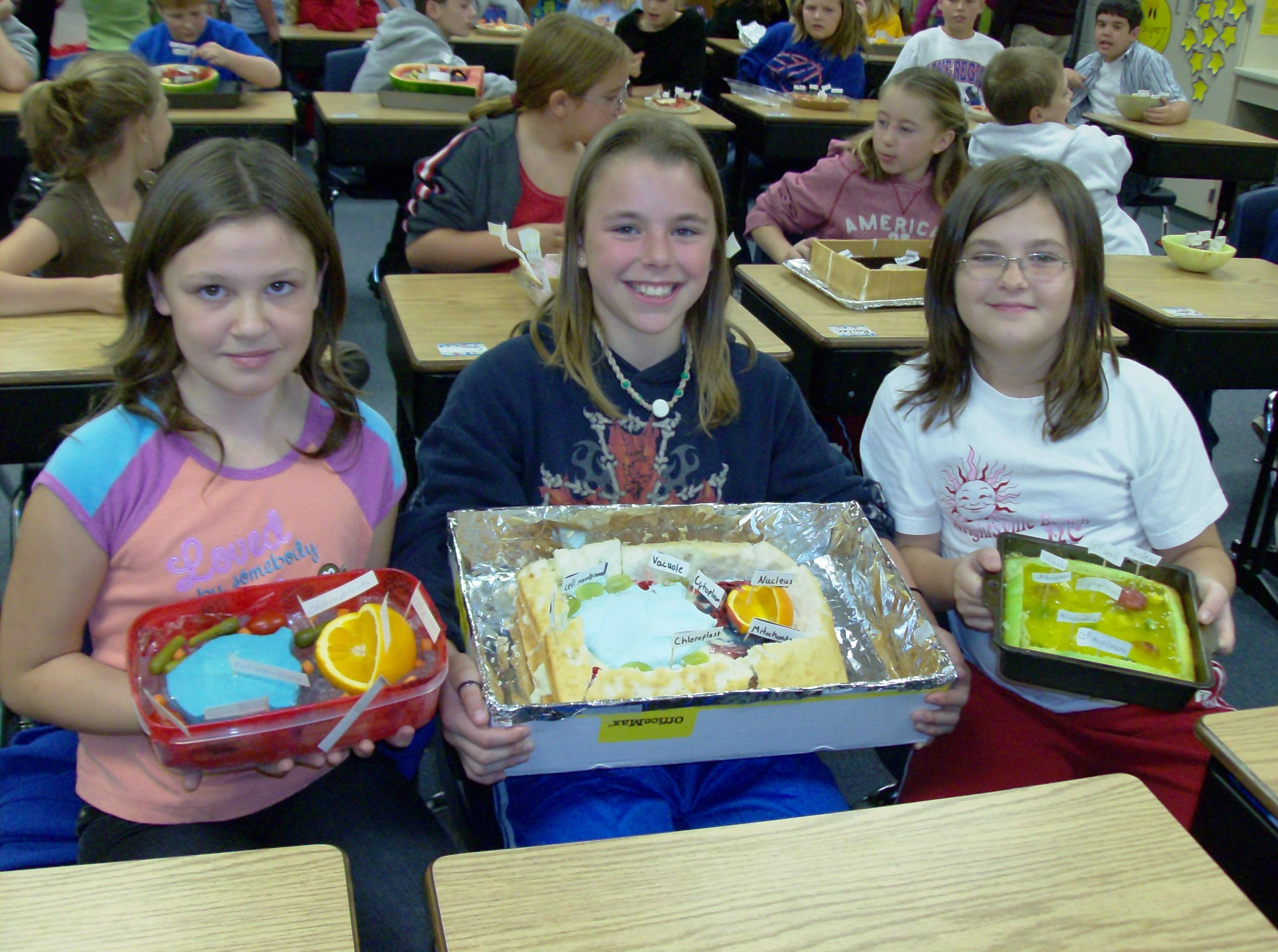 Edible plant cell project 2007